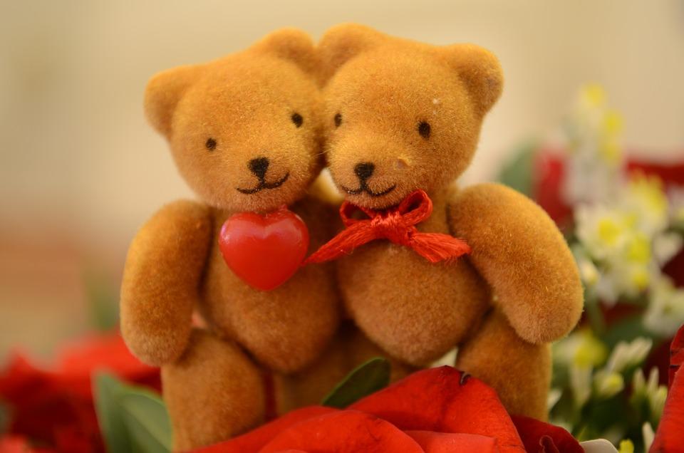 bear love heart bears valentines day cute sweet