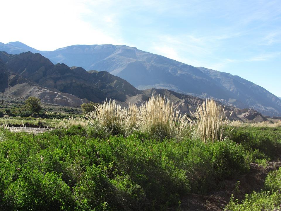 Landscape, Travel, Holiday, Nature, Beautiful, Beauty