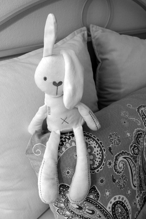 Bed, Bed Bunny, Hare, Rabbit Ear, Pillow, Snuggle