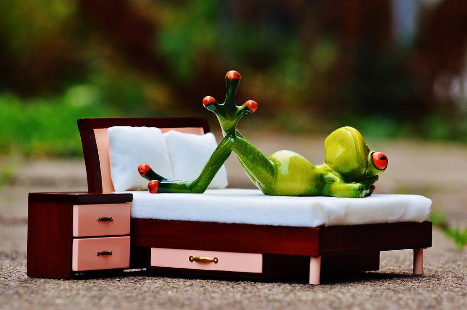 Frog, Love, Thoughts, Bed, Fig, Funny, Cute, Concerns