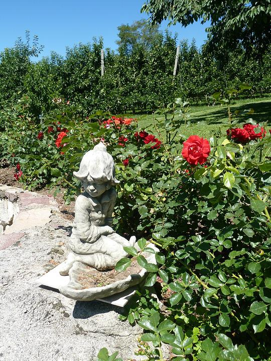 Garden, Stone Figure, Bed Of Roses