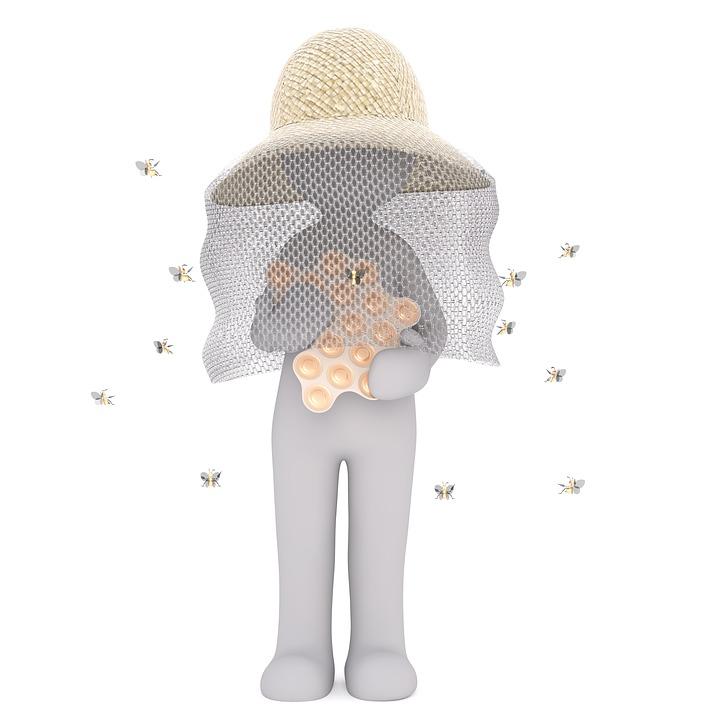 Beekeeper, Bee, Farm, Honey, Agriculture