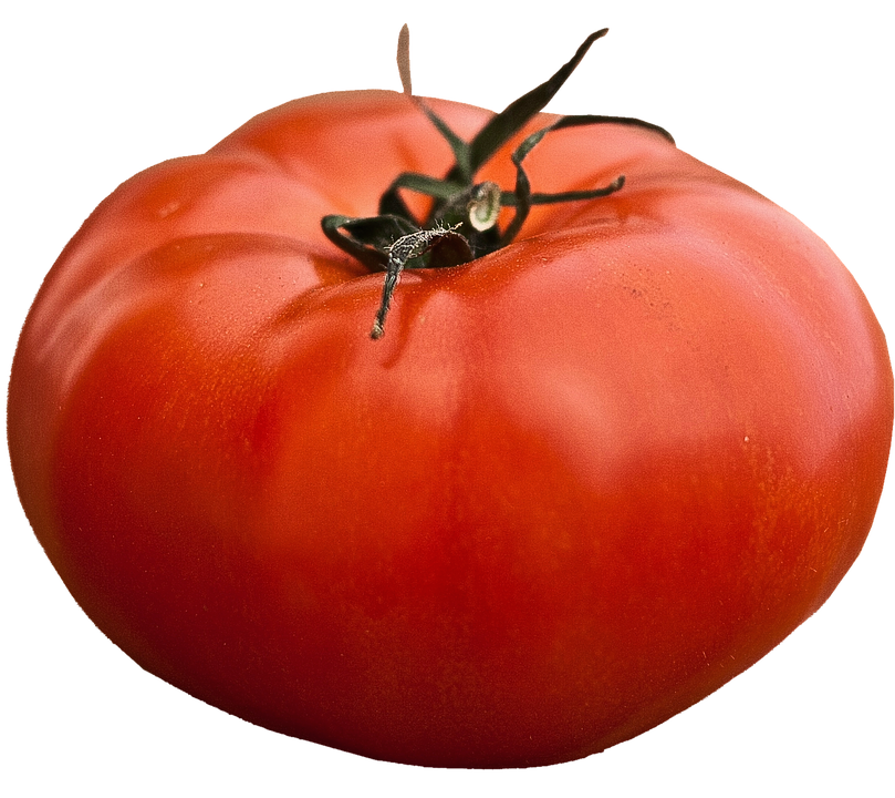Isolated, Beefsteak Tomato, Vegetables, Food, Garden