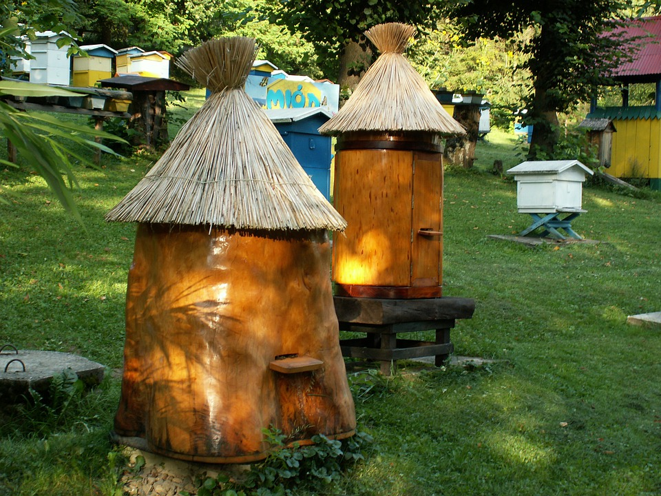 Ul, Bees, Beekeeping, Distributional Effects, Honey