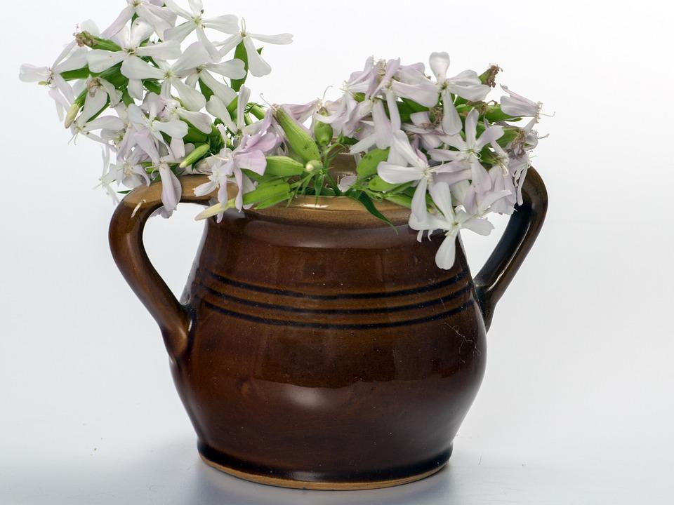 Flowers, Krug, Beer Stein, Brown