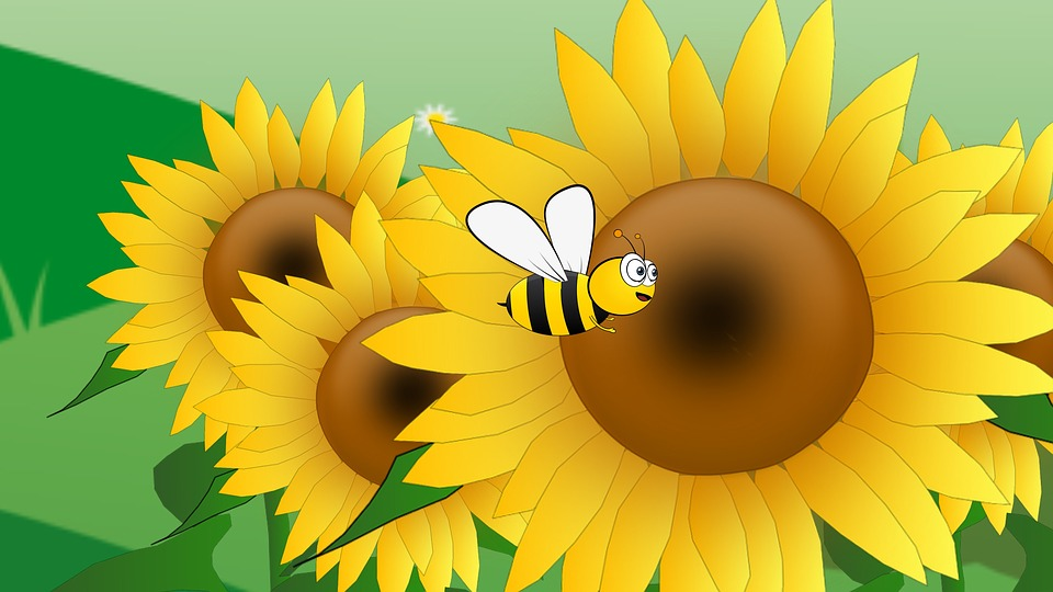 Bees, Flower, Sunflowers
