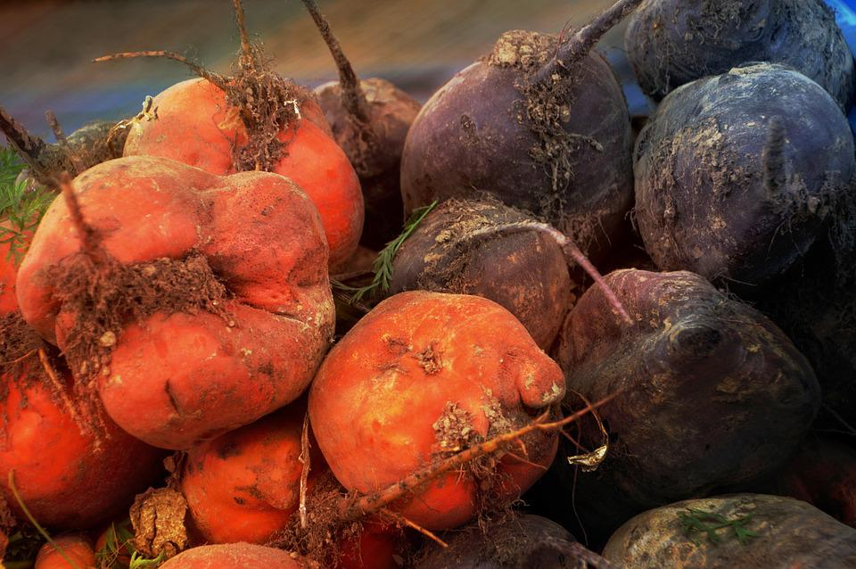 Beets, Vegetables, Vitamins, Food, Harvest, Bio, Power