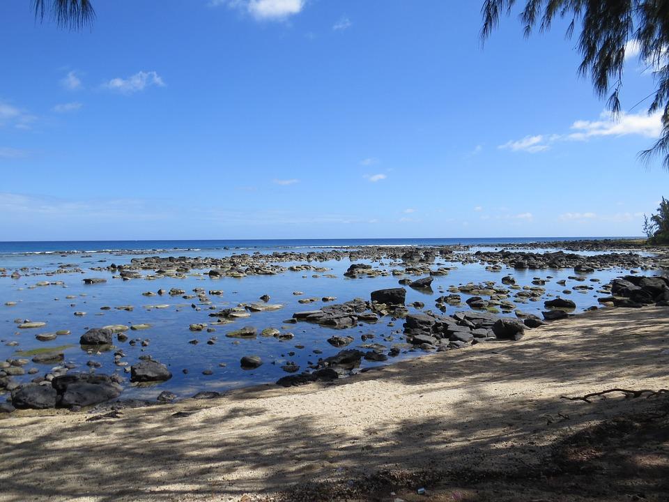 Stones, Mar, Nature, Beira Mar, Water, Beach, Sand