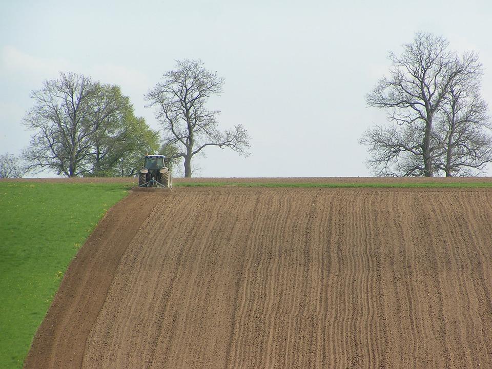 Belgium, Field, Furrow