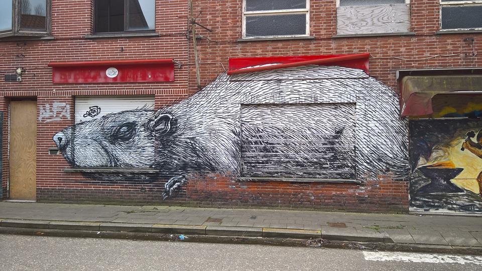 Grafitti, Doel, Belgium