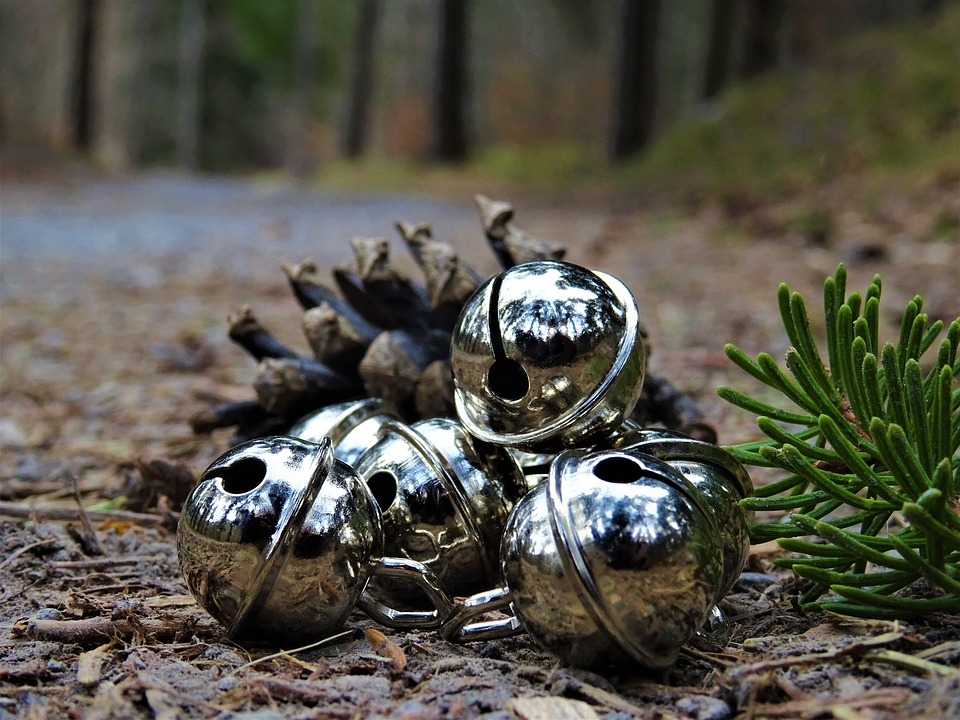 Bell, Fir Needle, Pine Cones, Wood, Nature, Forest