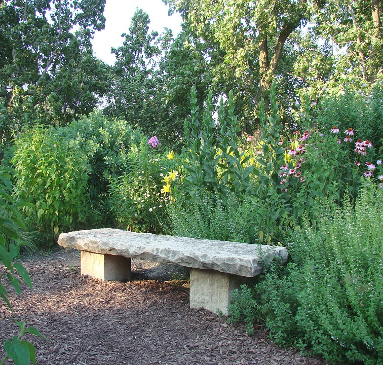 Stone, Bench, Flowers, Plants, Nature, Summer