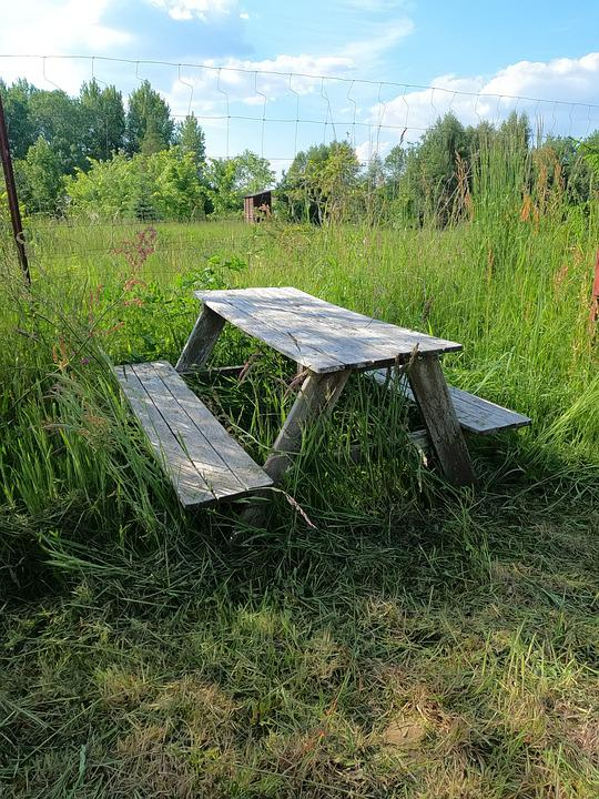 Bench, Old Bench, Meadow, Rest, Nature, Wood, Sit