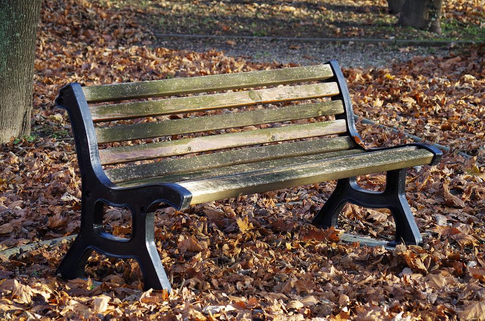 Bench, Park, Autumn