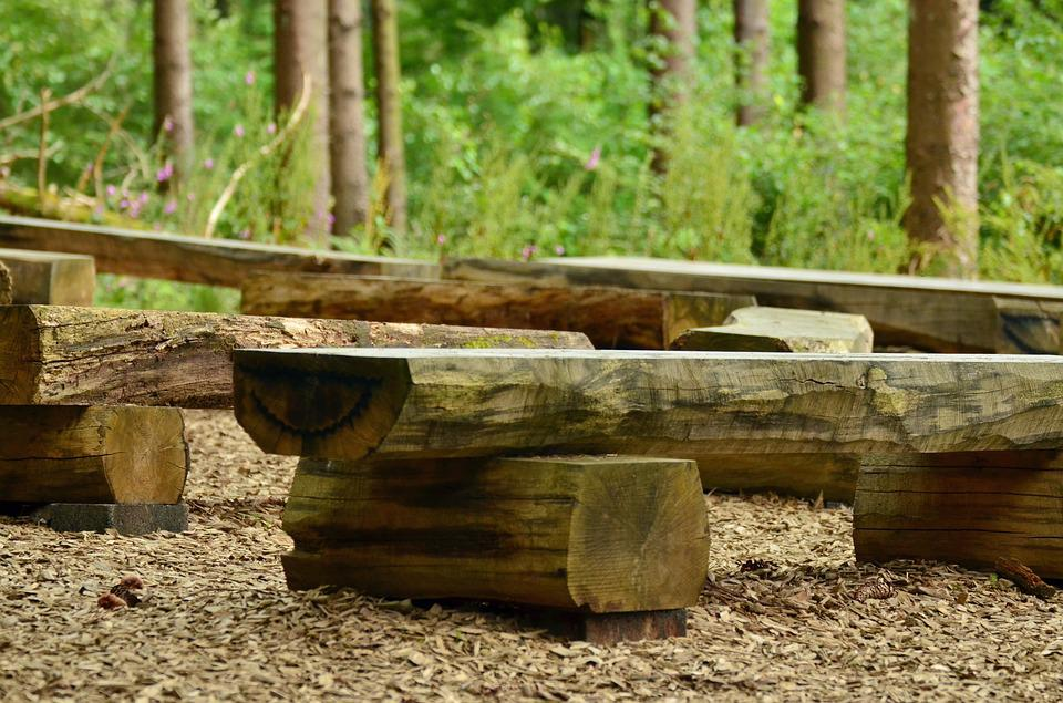 Seat, Wooden Bench, Forest, Bench, Click, Out, Wood