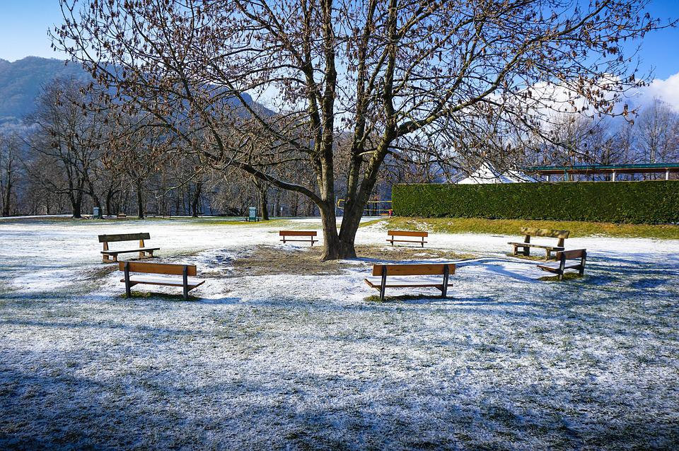 Park, Benches, Mountain, Snow, Bench, Tree, Outdoor