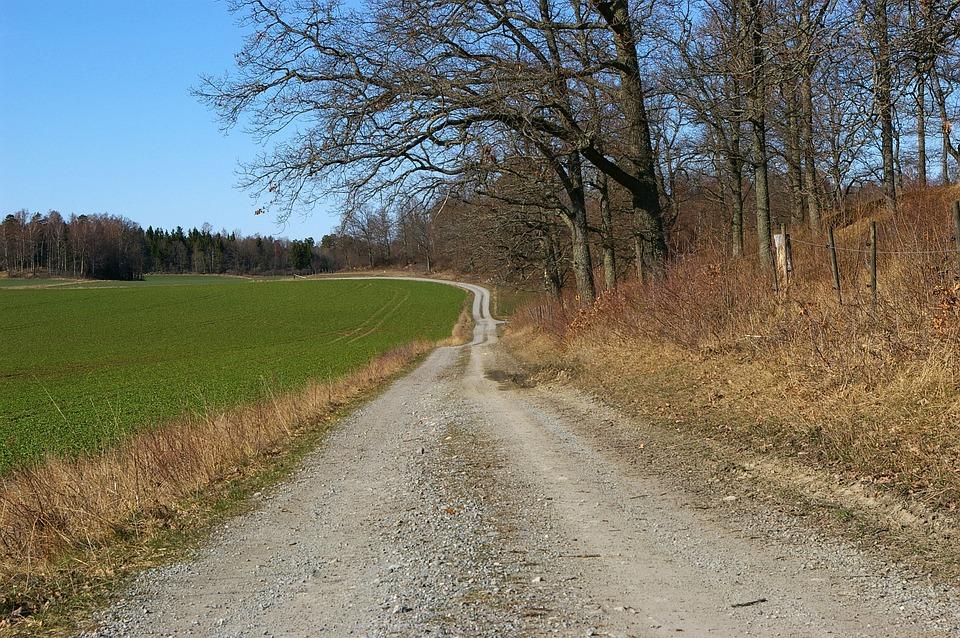 Dirt Road, Rough, Motivation, Bend