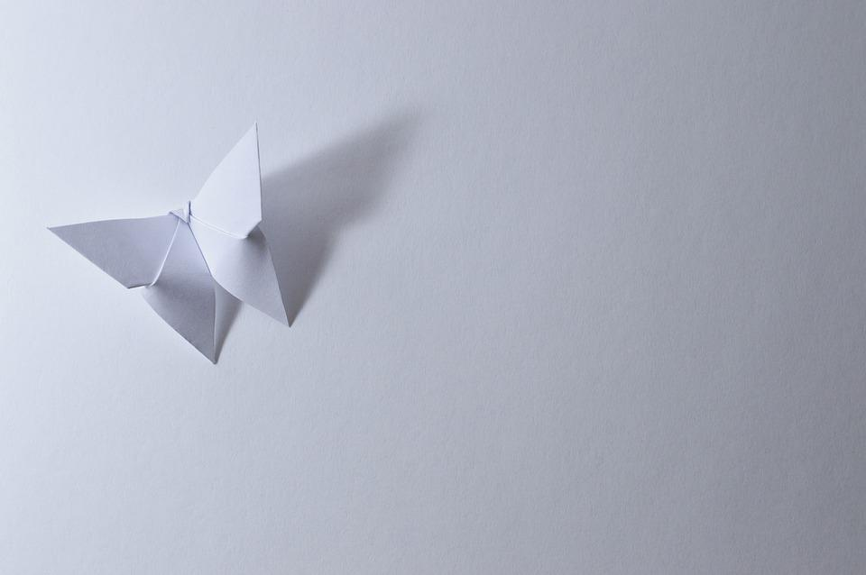 Free Photo Bent Leaf Paper Butterfly Shadow Origami White Max Pixel