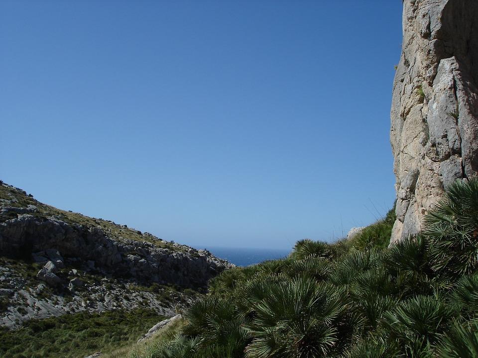 Rock, Steep, Wall, Bergsport, Leisure, Freedom, Feeling