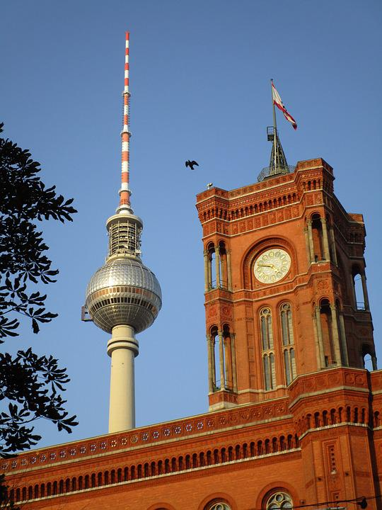 Tv Tower, Red Town Hall, Clock, Berlin, Bird, Capital