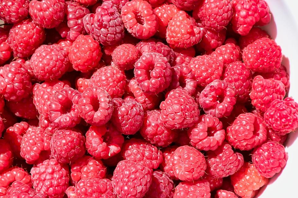 Free photo Berries Fruits Raspberries Delicious Fruit - Max