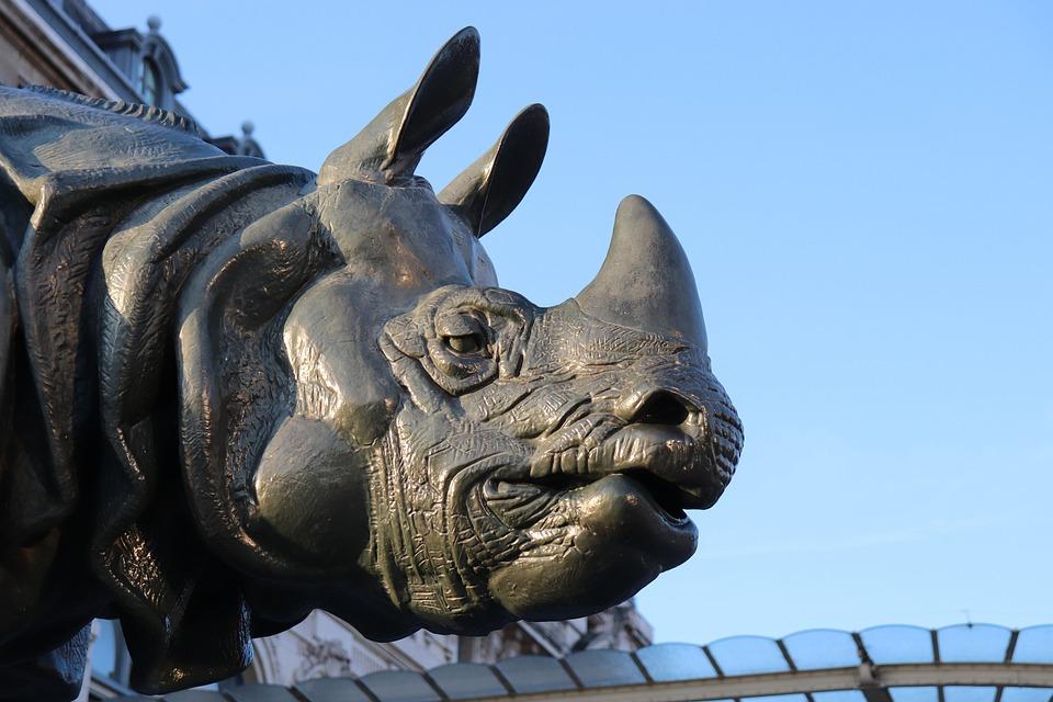 Sculpture, Bronze, Dark Grey, Rhinoceros, Art, Bestiary
