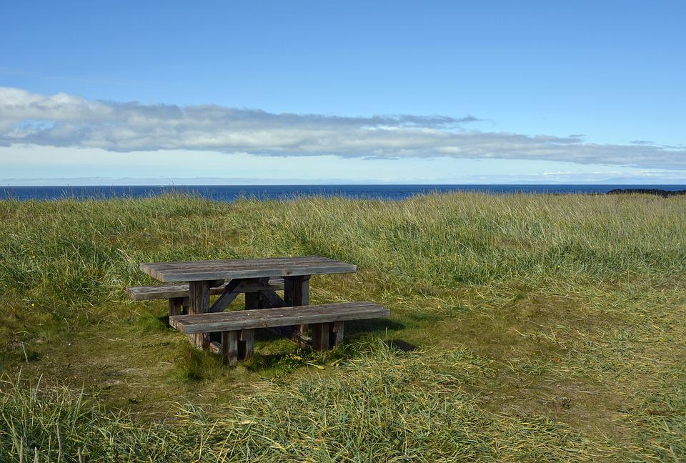Table, Bank, Picnic Table, Picnic, Between Catering