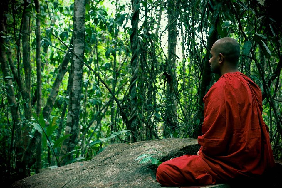 Meditation, Bhikkhu, Mahamevnawa, Sri Lanka, Buddhist
