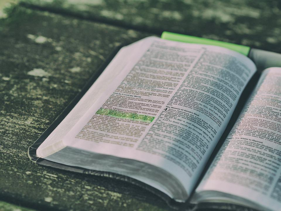 Bible, Book, Close-up, Document, Education, Highlight