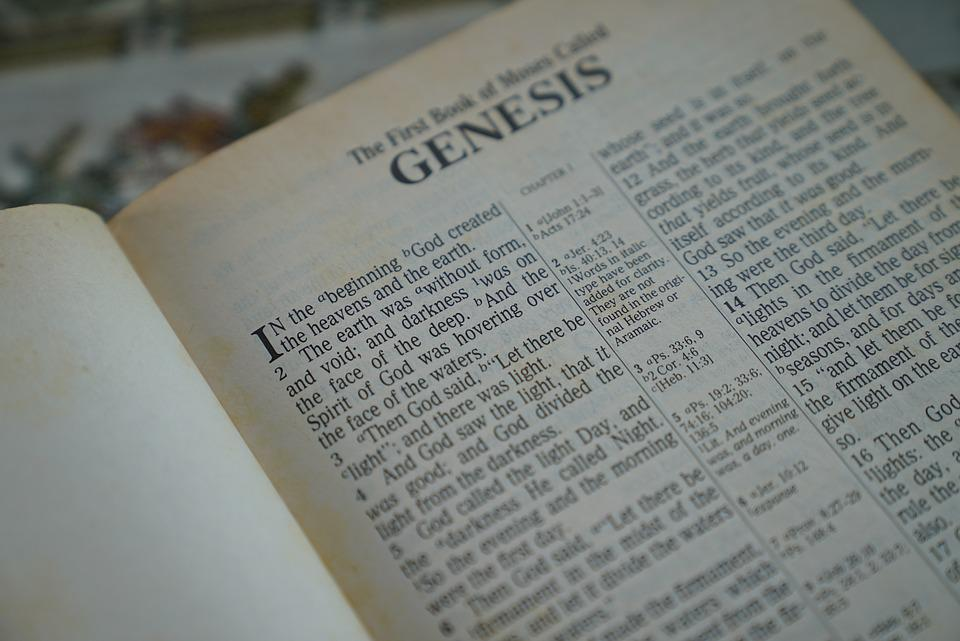 Image result for book of genesis