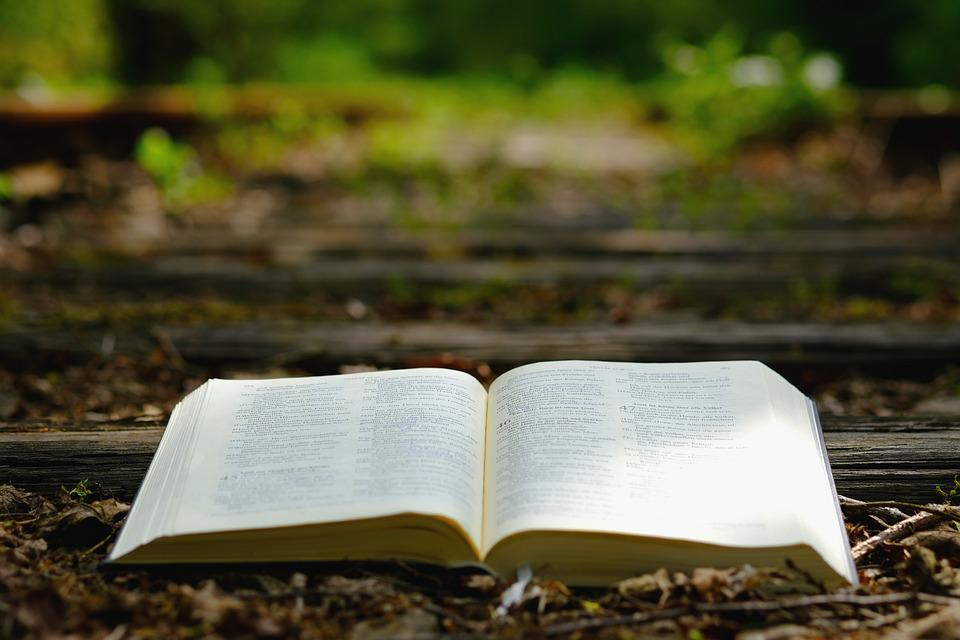 Bible, God's Words, Nature, Wood, Rails, Travel, Old