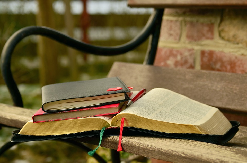 Books, Learn, Bible, Notes, Bible Study, Paper, Study