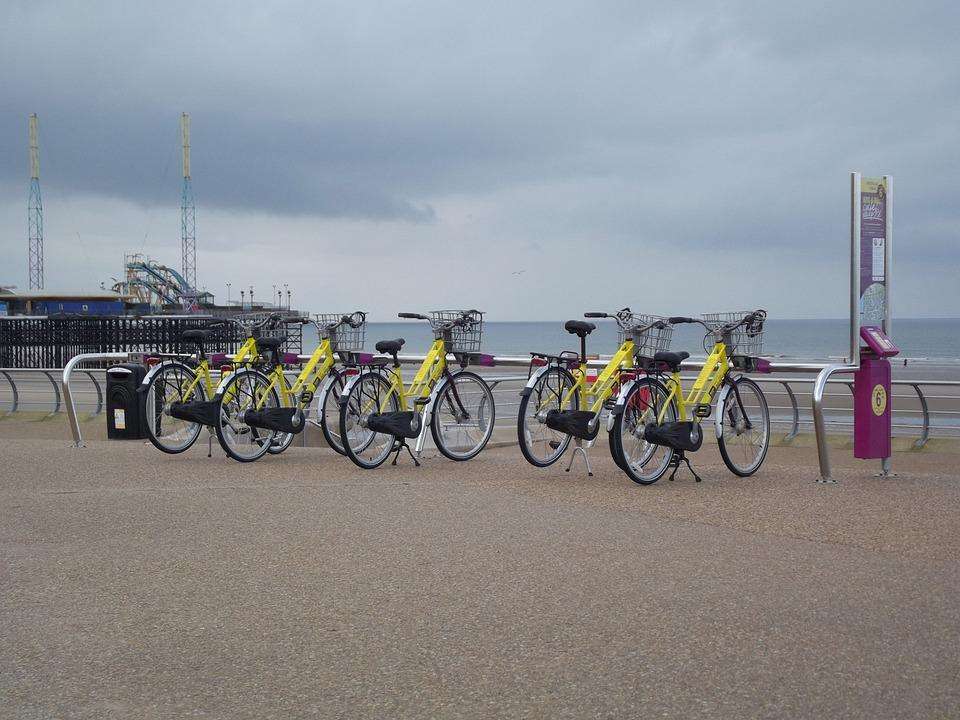 Bike Hire, Hire, Bicycle, Bike, Cycle, Activity