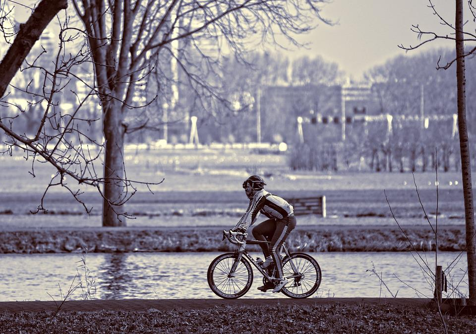 Cyclist, Racing Cyclist, Man, Person, People, Bicycle