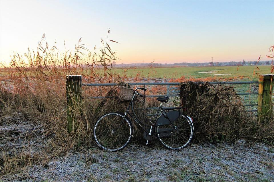 Sunrise, Bicycle, Grandma's Bike, Fence, Parking