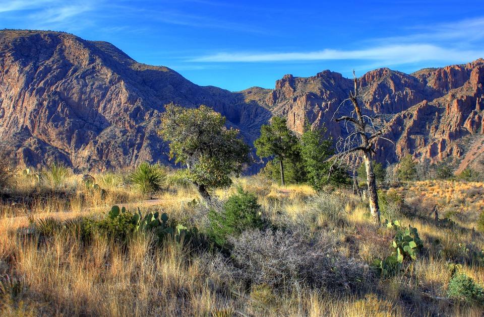 Big Bend National Park, Texas, Usa, Rocks, Mountains