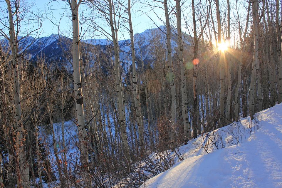 Big Cottonwood Canyon, Utah, Winter, Sunset, Mountain