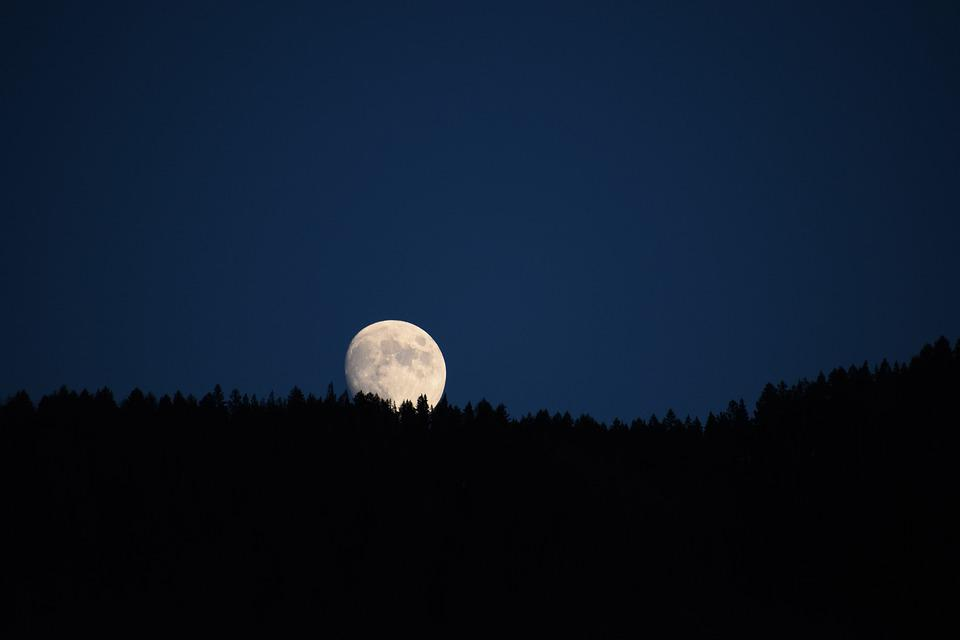 Moon, Big, Trees, Space, Fantasy, Atmosphere, Sky