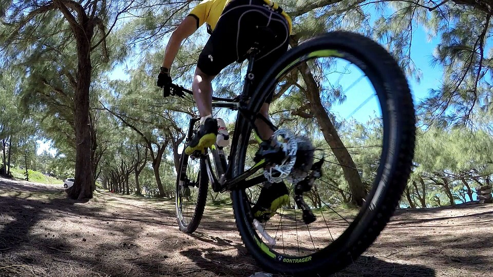 Bike, Adventure, Trail