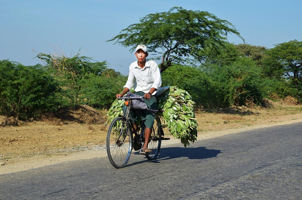 Bike, Cyclists, Transport, Bicycle Transport