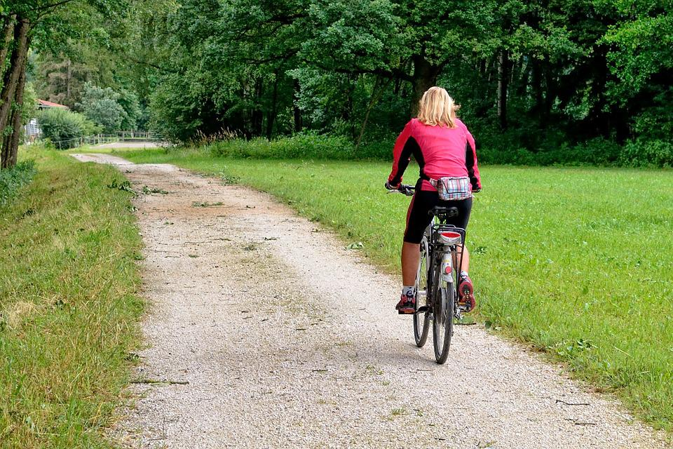 Cycling, Cycle Path, Bicycle Path, Bike, Cyclists
