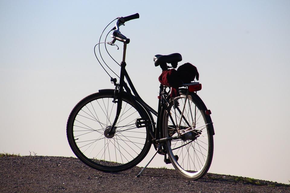 Bike, Bike Ride, Leisure, Tour, Cycle, Cycling, More