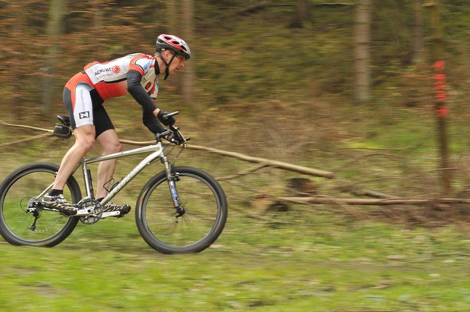 Cycling Races, Mountain Bike, Bike, Forest, Cycling