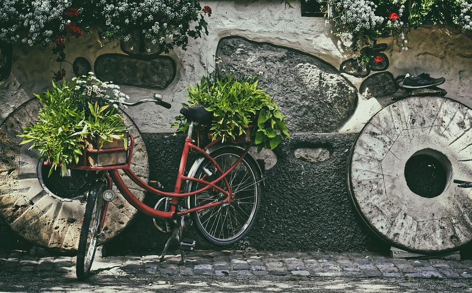Nostalgia, Bike, Old, Plant, Vintage, Wheel, Retro