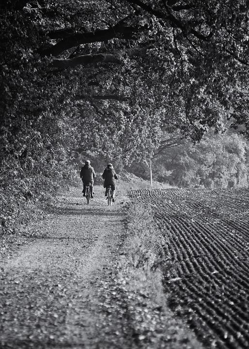 Bike Ride, Bike, Couple, Forest, Autumn, Nature