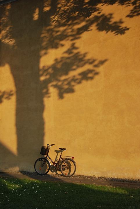 Bike, Grass, Wall, Tree, Shadow, A Joke