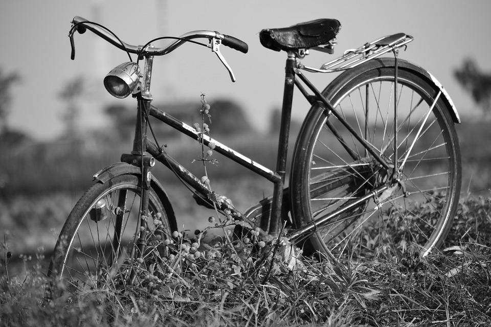 Wheel, Bike, Spoke, Roll Along, Transportation System