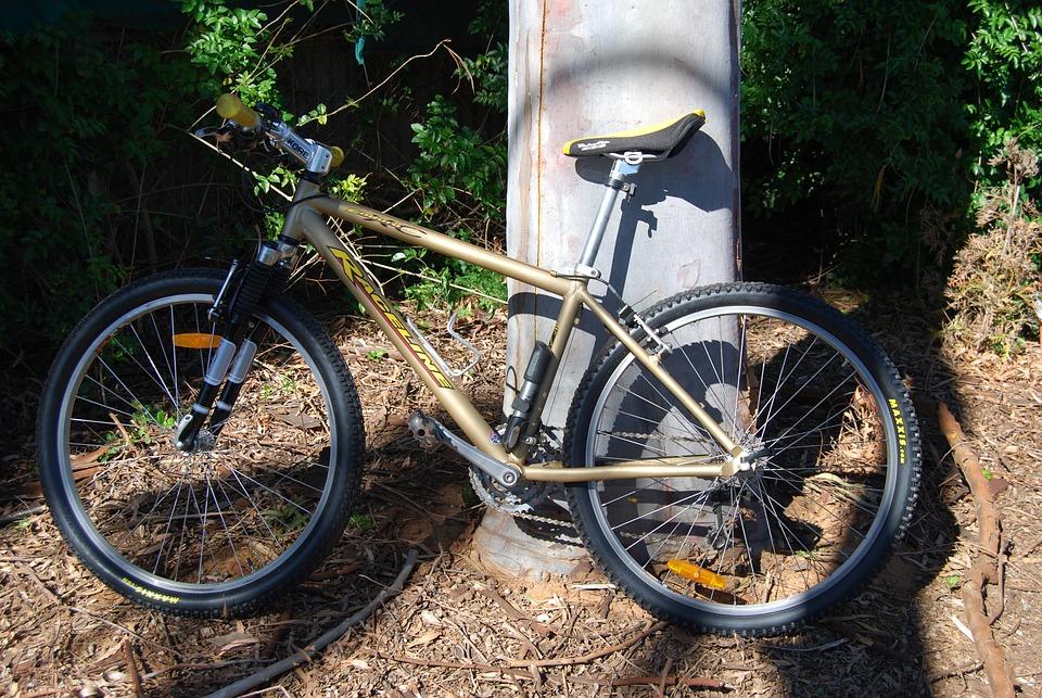 Bike, Bicycle, Cycle, Biking, Mtb, Sport, Wheel
