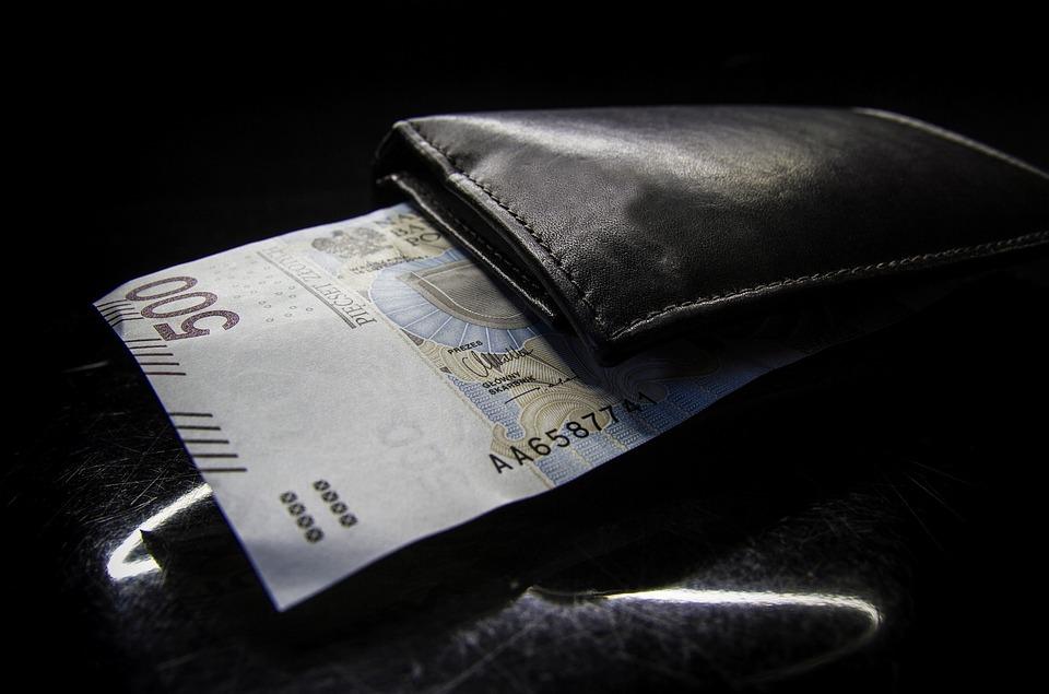 Polish, Zloty, 500, Bills, Money, Cash, Currency