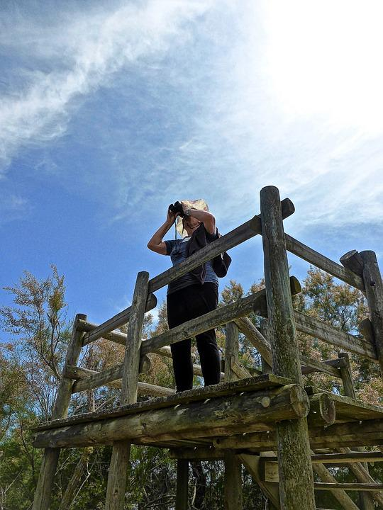 Lookout, Binoculars, View, Spyglass, Viewer, Scope